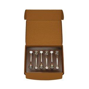 Łyżeczki do herbaty w zestawie prezentowym La posate Alessi AM19