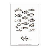 Plakat Ryby