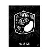 Plakat Plant Cell - zdjęcie 1