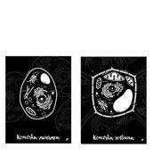 Plakat Komórka Roślinna i Komórka Zwierzęca w zestawie 2 szt. - zdjęcie 1