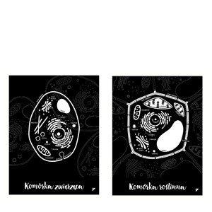 Plakat Komórka Roślinna i Komórka Zwierzęca w zestawie 2 szt.