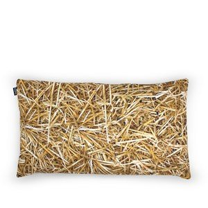 Poduszka z wypełnieniem z łusek gryki Hayka 50 x 30 cm