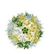 Kinkiet Bloom miętowy - małe zdjęcie