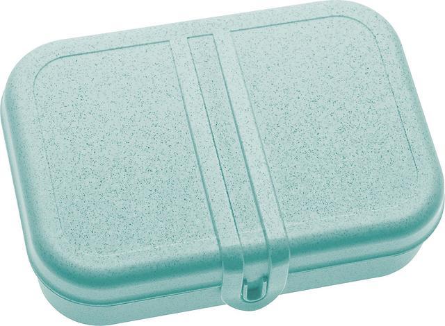 Lunchbox Pascal Organic L morski