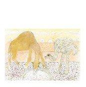 Dekoracja ścienna Moments of Ingenuity The Camel and the Ostrich - małe zdjęcie
