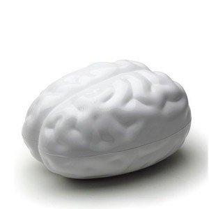 Pojemnik Brain