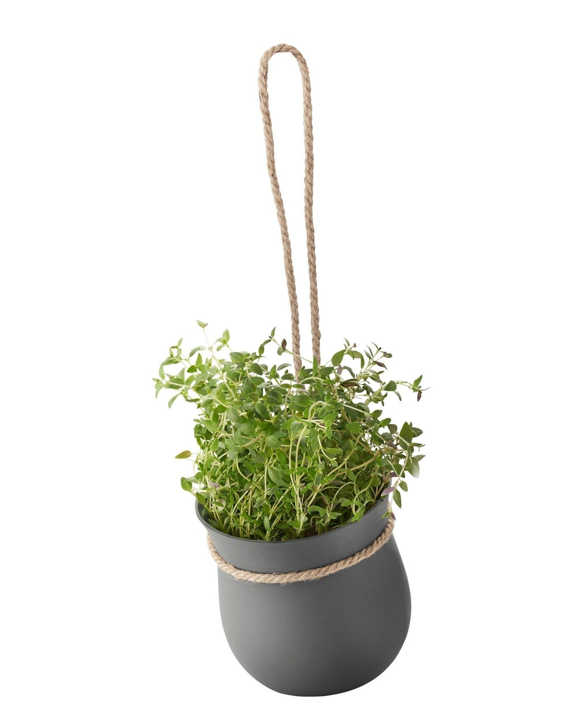 Doniczka Do Ziół Grow It