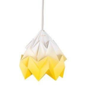 Lampa Moth gradient